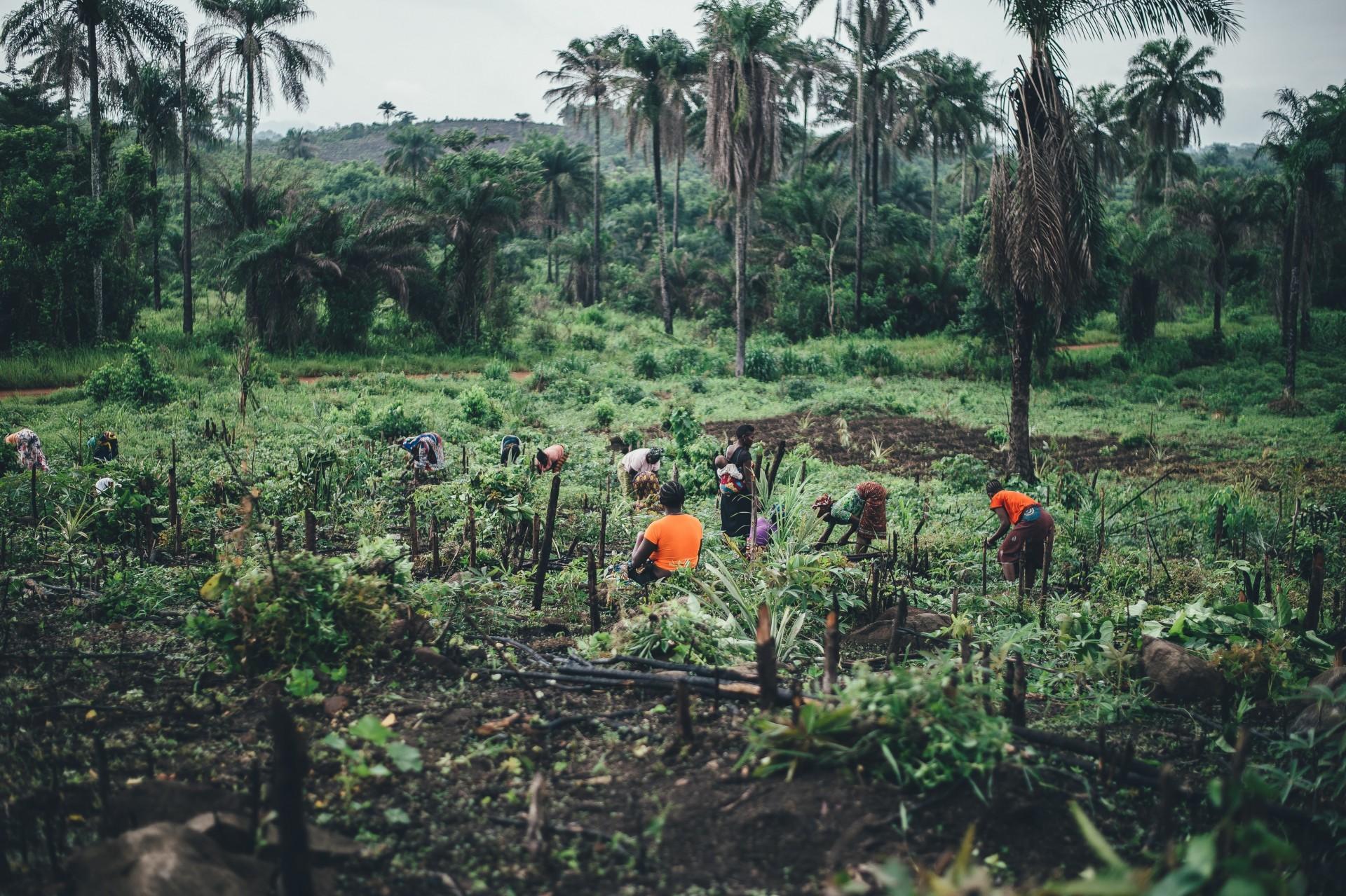 Menneskerettighetslov for næringslivet – hvorfor det?