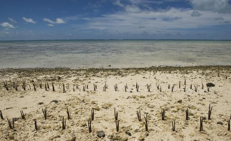 Foto: UNEP