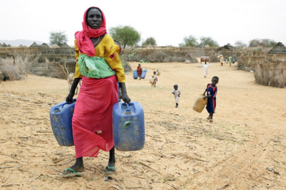 Privatisation of water. Public-private partnerships: do they deliver to the poor?