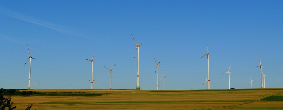 Krever at oljefondet investerer i fornybar energi