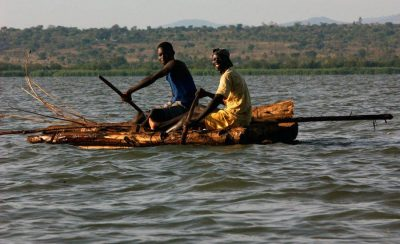 UN warns on overharvesting